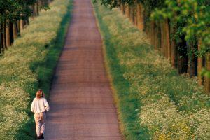 wilbing caminando adelante